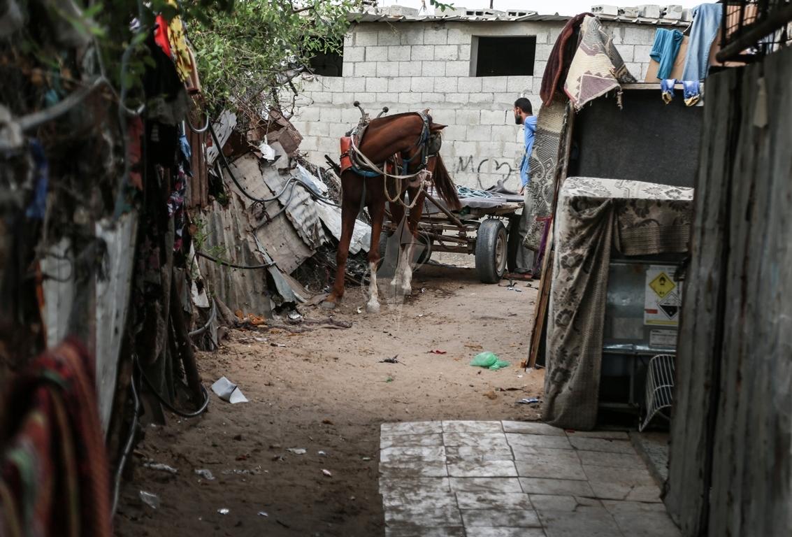 أطفال غزة يلعبون على طريقتهم الخاصة رغم البؤس والفقر والحصار (39518722) 