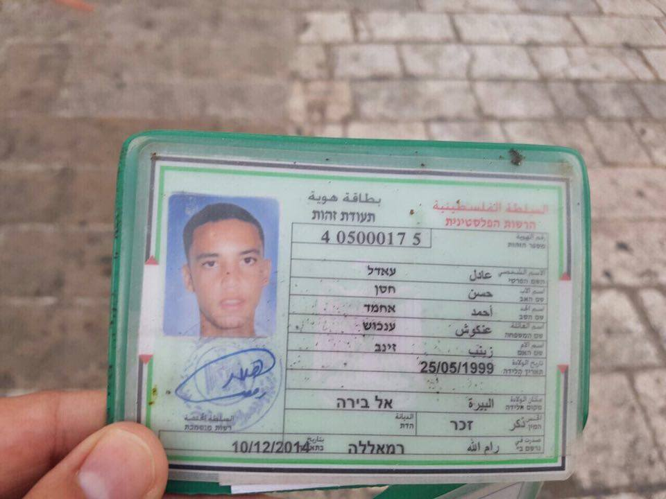 القدس: اشبال الخلافة يقتلون مجندة يهودية واصابة 5 جنود 5677b62135312110d4ea0b4b71d96448