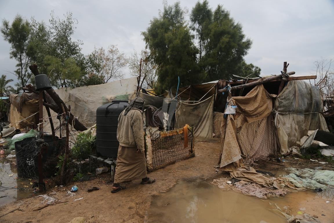 مواطن يرعى الإبل  رغم برودة الطقس وغزارة الأمطار (39191046) 
