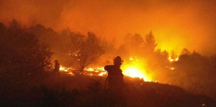 حرائق في اسرائيل