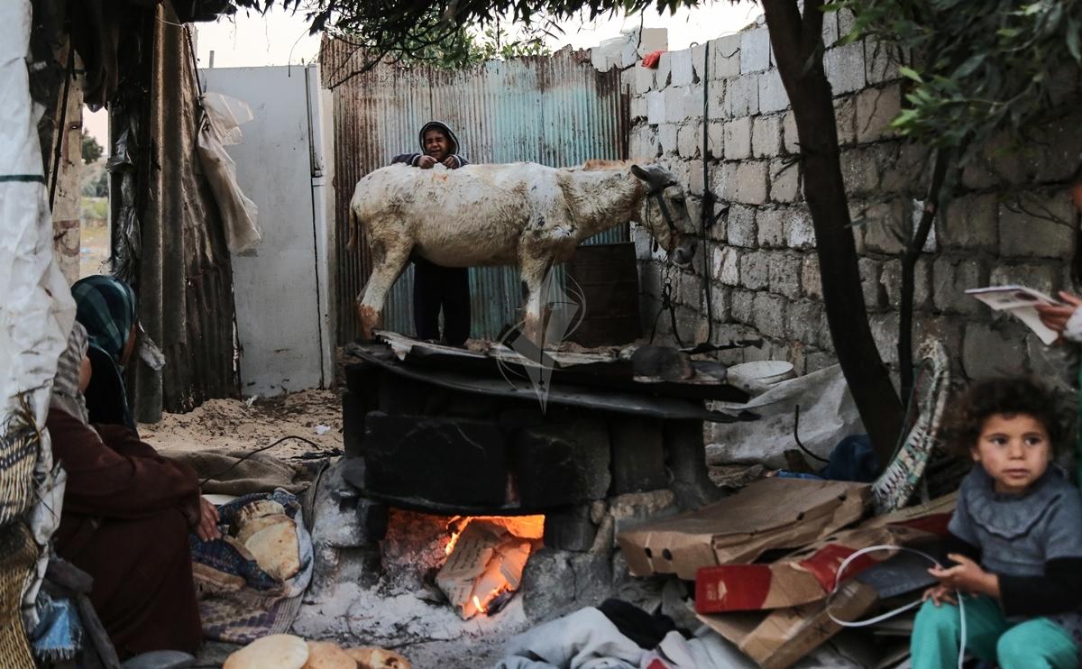 افرن الطينة بعد تفاقم أزمة الكهرباء (13)