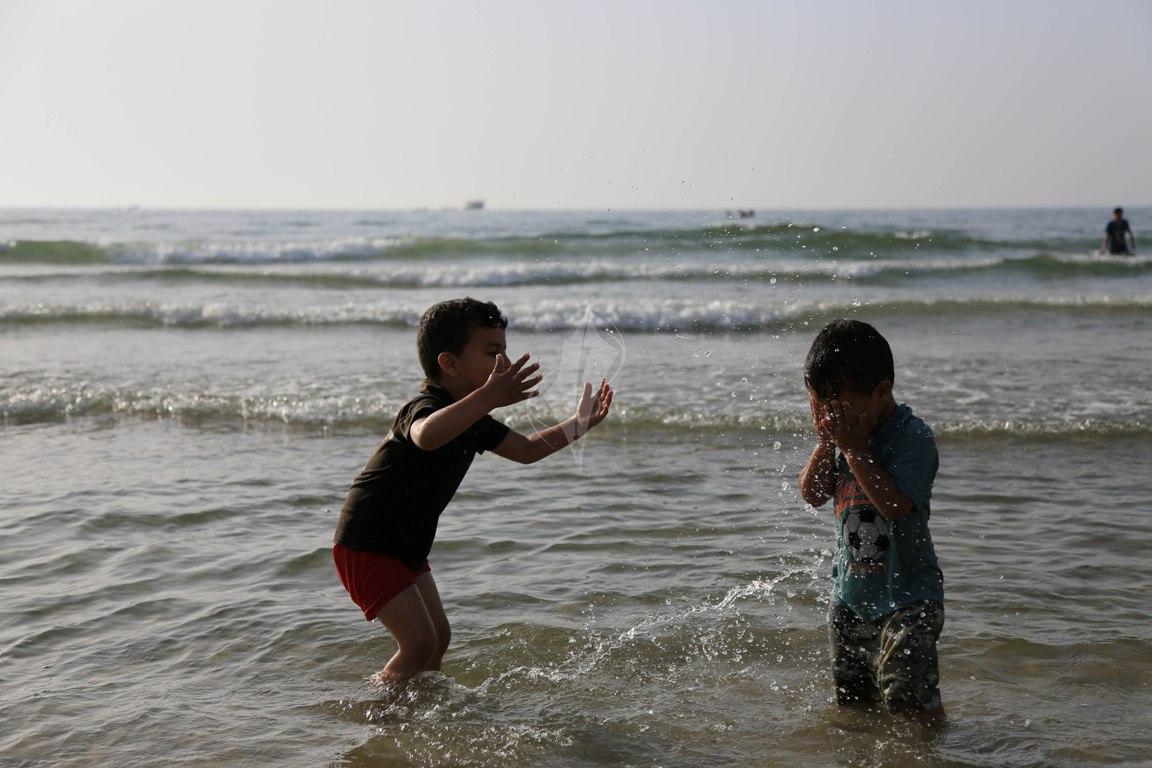 بحر غزة (30438809) 
