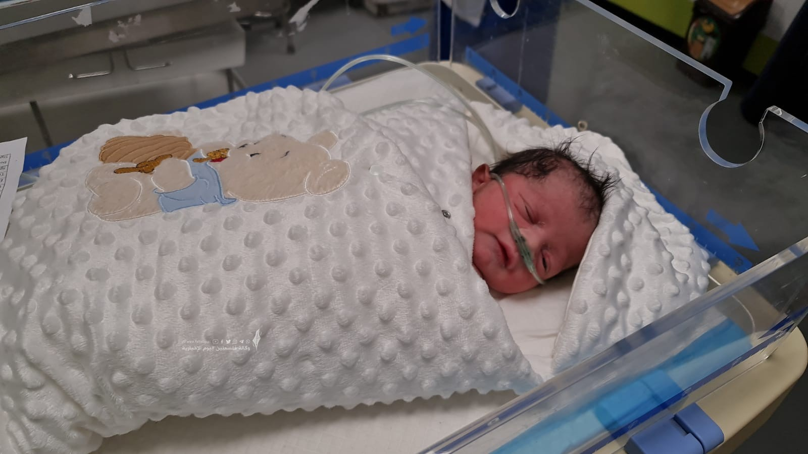 الأسير محمد القدرة يرزق بطفل من نطفة مهربة (6).jpeg
