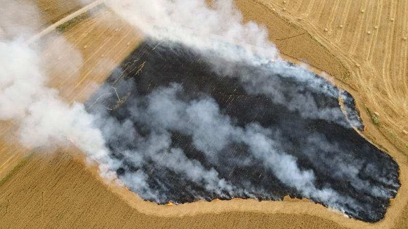حرائق في غلاف غزة (6).jpg