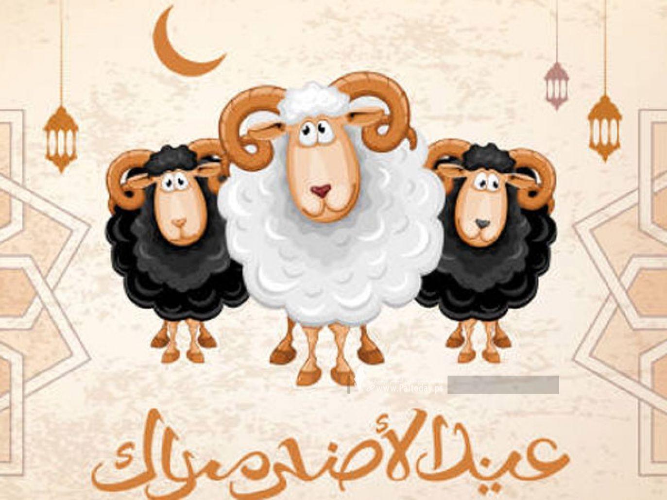 صور عيد الاضحى- بطاقات عيد الأضحى- الاضحى- الأضحى1.jpg