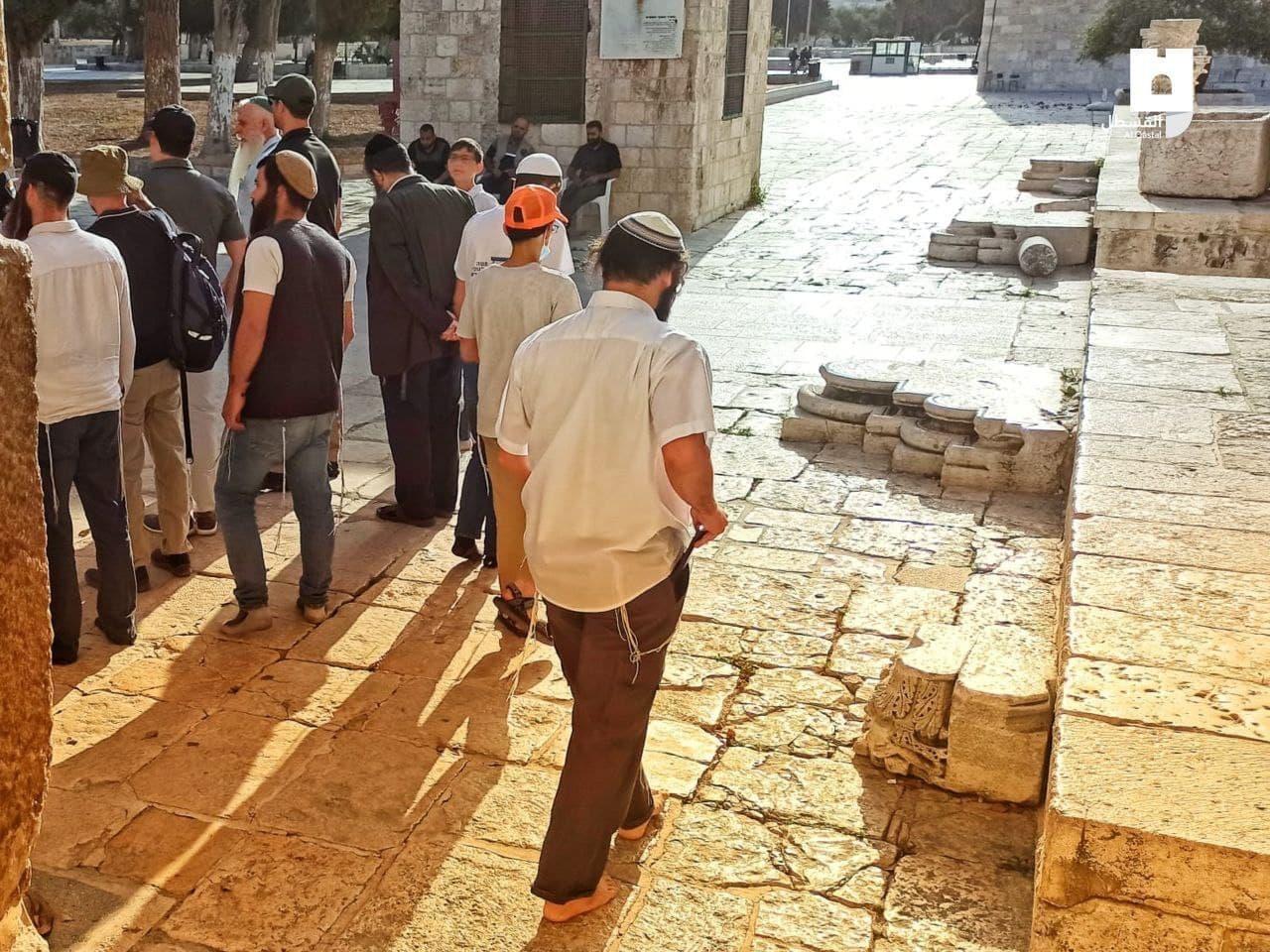 مستوطنون يقتحمون القدس (1).jpeg