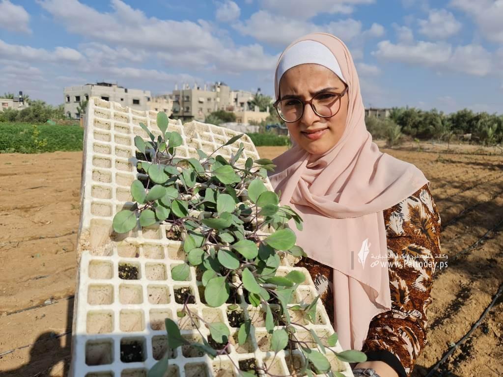 فتيات من غزة يُقمن مشروع زراعي تحدياً للبطالة (11).jpeg