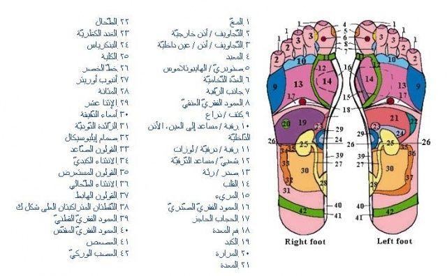تفاصيل الجسم في القدمين
