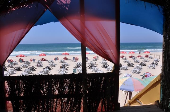 استراحات على شاطئ البحر