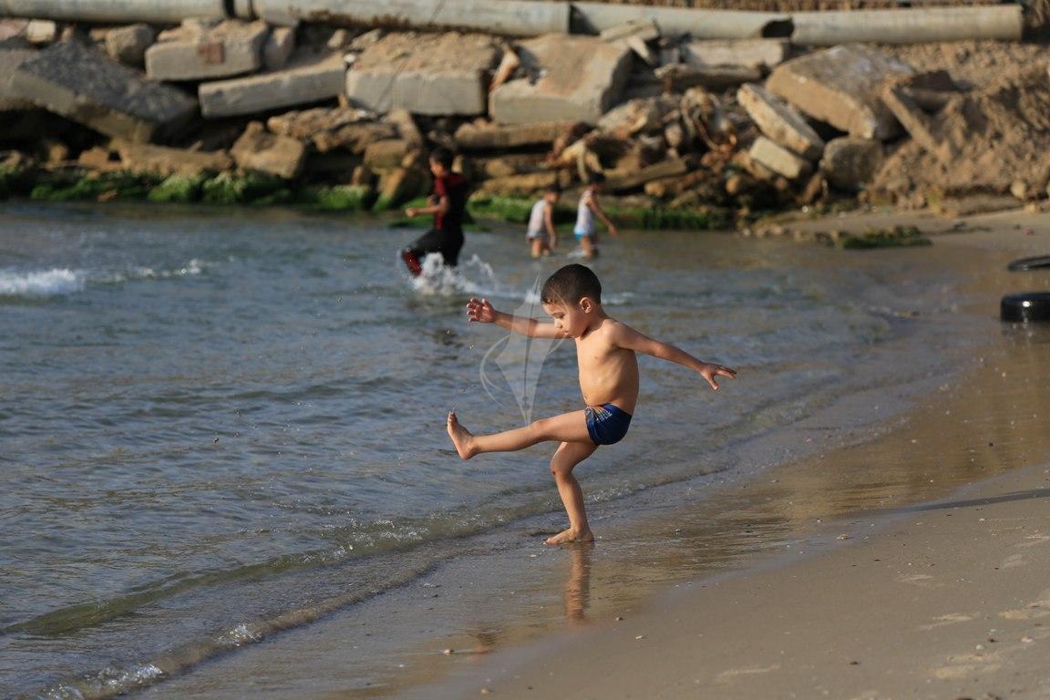 بحر غزة (30438811) 
