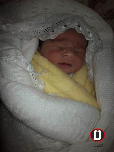 الطفل محمد عمر الملا