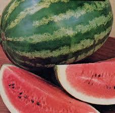 البطيخ منعش صيفاً وبفوائد جمّة 56fde04ac3996ce4090db7a26aa03312