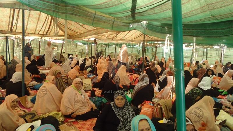 حجاج فلسطين على جبل عرفات في يوم الحج الأكبر