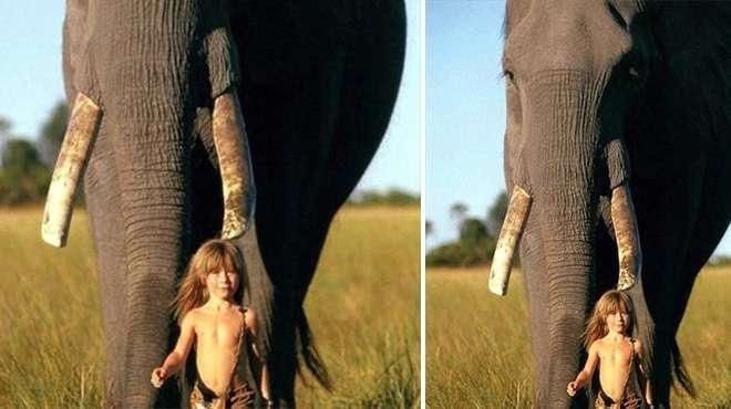 طفلة تعيش مع الحيوانات