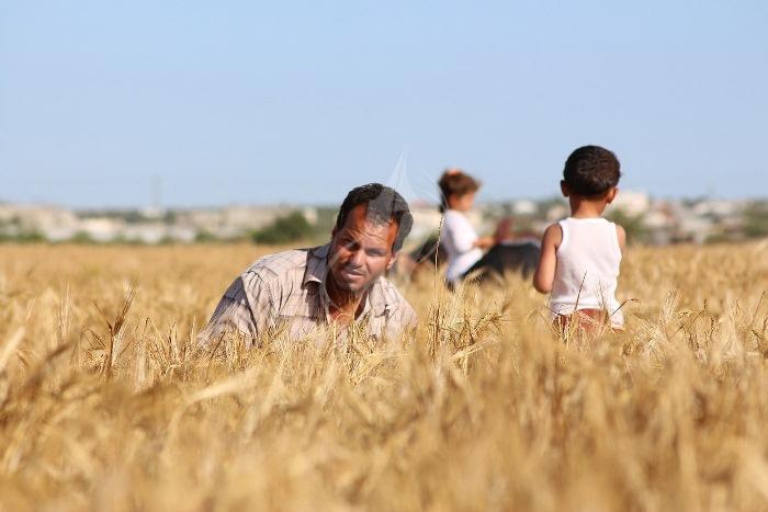 مزارعون (5)